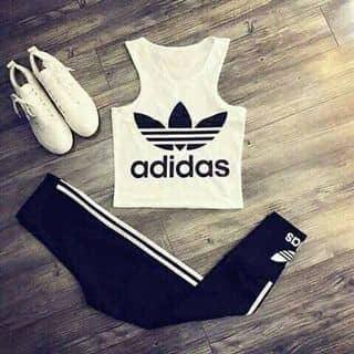 Bộ Adidas của nhji tại Hải Phòng - 2947911