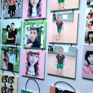 Bộ ba ảnh treo tường của phamhuong209 tại Lâm Đồng - 1508488