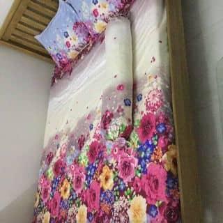 Bộ drap vải kate cotton nhập Hàn quốc của vuphong104 tại Bà Rịa - Vũng Tàu - 2948868