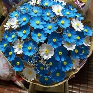 💐Bó hoa cúc xanh💐 của anthuy101 tại Bình Phước - 2176297