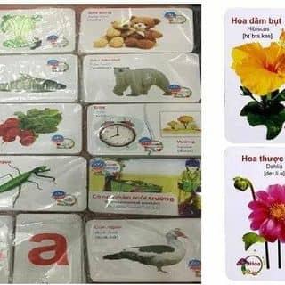 Bộ thẻ cho bé của baotinyb tại Yên Bái - 3008129