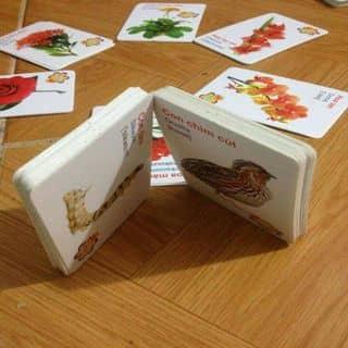 Bộ thẻ học thông minh cho bé của anhphan92 tại Hà Nam - 1620685