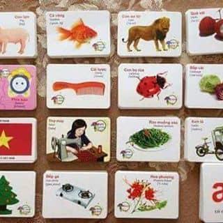 Bộ thẻ học thông minh cho bé của duongquynh45 tại Thái Nguyên - 2315791
