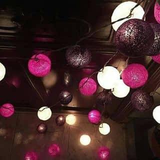 Bóng đèn trang trí thailand của tunmat tại Hồ Chí Minh - 2191216