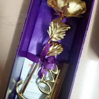 Bông mạ vàng của dungdung213 tại 100 Trần Hưng Đạo, Dương Tơ, Huyện Phú Quốc, Kiên Giang - 1423975