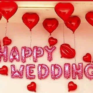 bóng nhôm happy wedding của phannam65 tại 37 Lương Khánh Thiện, tt. Trường Sơn, Huyện An Lão, Hải Phòng - 2813509