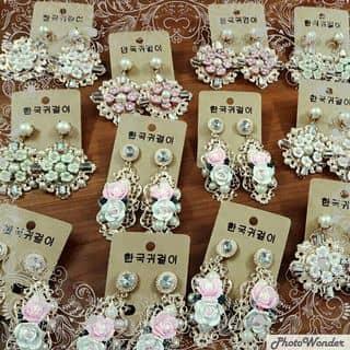 Bông tai hoa hồng của vyvypham1 tại Đồng Nai - 1127140
