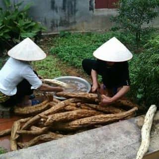 Bột sắn dây nhà làm của ngochuong116 tại An Giang - 3008253