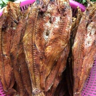 Cá ngáo sông Đà sáy của benlinh tại Điện biên phủ, Huyện Điện Biên, Điện Biên - 1413730