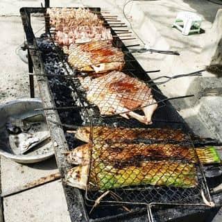Cá nướng, gà nướng, lợn nướng của trang.pip.370 tại Bản Lác, Huyện Mai Châu, Hòa Bình - 266368