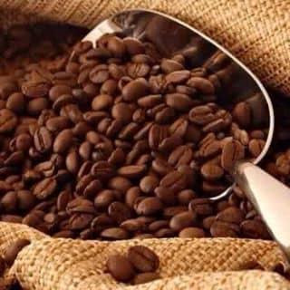 cà phê sạch robusta của congchuamianma tại Tây Ninh - 847377