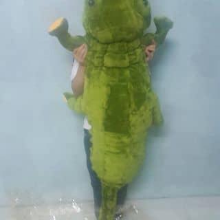 Cá sấu bông của thinheuro tại Thừa Thiên Huế - 2463282
