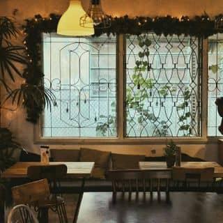 Cafe màu hoàng hôn của kunhouse tại 193A/D3 Nam Kỳ Khởi Nghĩa, Quận 3, Hồ Chí Minh - 2956803