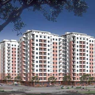 Căn hộ himlam 6A trung sơn của canhosieure.net tại Hồ Chí Minh - 2306227