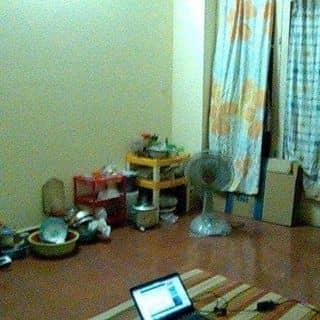 CẦN NGƯỜI THÁNG 4 VÔ Ở LUÔN của thuy08101995 tại Hồ Chí Minh - 2943398