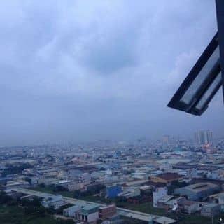 Cần thuê phòng của juanhemdu0ckajde0gj tại Hồ Chí Minh - 2478389