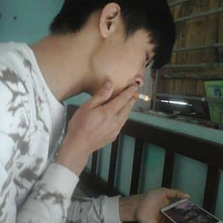 Cần tiền nên bán điếu thuốc hút dở :)) của ytvw3 tại Shop online, Huyện Vân Đồn, Quảng Ninh - 2490091