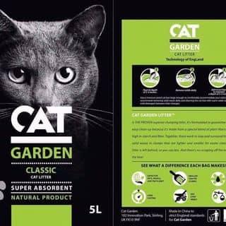 Cat GARDEN của petplusvn2 tại Hồ Chí Minh - 3255814