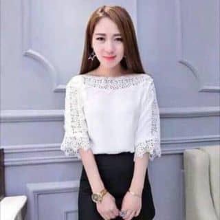 Cat han phoi ren của phuongdo60 tại Thừa Thiên Huế - 1403554