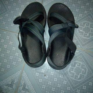 Chaco của tranmanh130 tại Shop online, Huyện Bình Lục, Hà Nam - 2762903