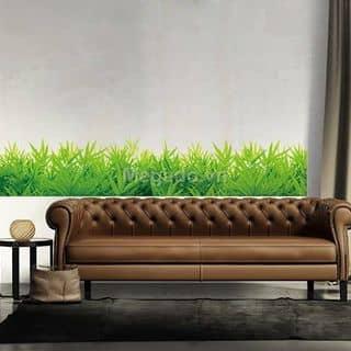 Chân tường cỏ của tramidu142009 tại Đồng Tháp - 846853
