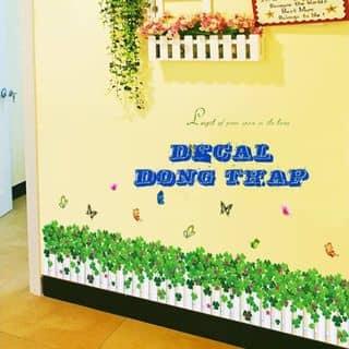 Chân tường hàng rào trắng cỏ 3 lá của tramidu142009 tại Đồng Tháp - 847435