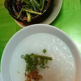 Cháo ếch singapore phần 1 con của anhque27 tại Hồ Chí Minh - 2615889