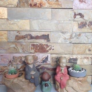 Chậu chú tiệu toạ thiền của tuongxongtram tại Hồ Chí Minh - 2190158