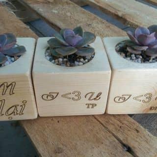 Chậu gỗ khắc tên bằnh laze ạ của yennguyen345 tại Bình Dương - 2057849