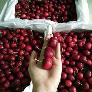 Cherry cherry của gautruc88 tại Hồ Chí Minh - 3420427