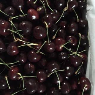 Cherry newzealand size 28+ của nhungwonderful6789 tại Hải Phòng - 2489930