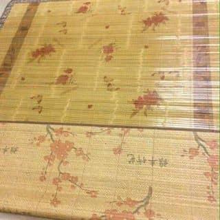 Chieu tre mat ngay he của phamha295 tại Thừa Thiên Huế - 3116529