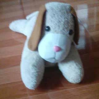 chó bông nhé mn dsaah của vuha199 tại Hưng Yên - 3682327
