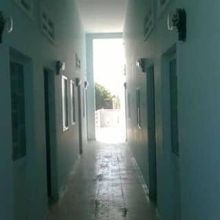 Cho thuê phòng trọ của nguyenthanhthaokd33 tại Hồ Chí Minh - 2708330
