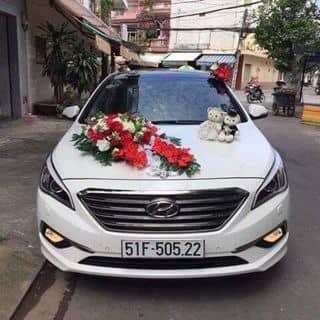 Cho thuê xe hoa, du lịch (sonata 2016) của nhocdung11 tại Hồ Chí Minh - 2474282