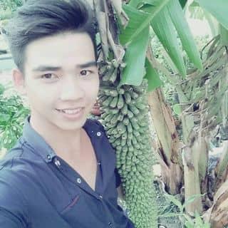 Chuối cây của kyphamvan tại Võ Thị Sáu, Thị Xã Tây Ninh, Tây Ninh - 992245