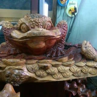 Cóc ba chân mang tiền vào nhà của hotrungtri tại Phú Yên - 2007536