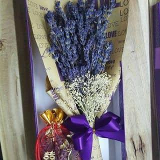 Combo bó lavender kèm túi thơm của anngo8 tại Tỉnh Lộ 741,  Thác Mơ, Thị Xã Phước Long, Bình Phước - 1278566