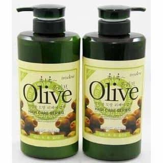 Combo dầu gội và dầu xả Olive 800ml/chai của haiyen848 tại Tây Ninh - 3856481