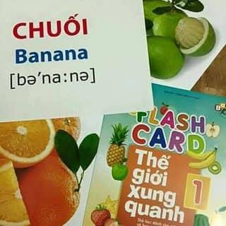 Combo flash card thế giới xung quanh của tantan59 tại Bắc Ninh - 1104434