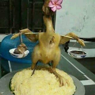 con gà mâm xôi của chinh1619 tại 10 Lý Tự Trọng, Quận Ninh Kiều, Cần Thơ - 1502739