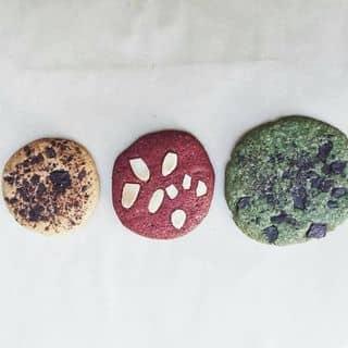 Cookie 3 hương của baokhuyen11 tại Hồ Chí Minh - 2945940
