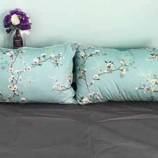 Cotton Hàn quốc của thaomi113 tại Hồ Chí Minh - 2046763