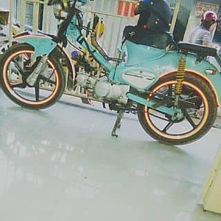 Cub70cc độ kiểng tự nhà lm  của kevinh tại Hồ Chí Minh - 3118380