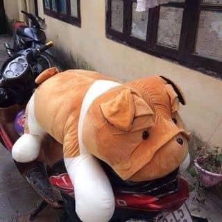 Cún bông của tuyetnhi882 tại Vĩnh Yên, Thành Phố Vĩnh Yên, Vĩnh Phúc - 2115239