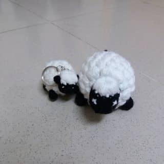 Cừu của hoangloananh tại 19 Nguyễn Văn Cung, Thành Phố Long Xuyên, An Giang - 1714738
