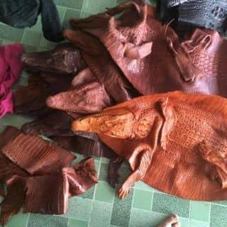 Da cá sấu 100% của phamduc55 tại Cần Thơ - 1591752