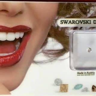 Đá đính răng mạ kim cương đẹp, chất lượng. Giá rẻ nhấy vịnh bắc bộ ah. Giá sỉ từ 10viên trở lên. Liên hệ 0968854444 của dadinhrang tại Đại Lộ Lê Lợi, Thị Xã Lai Châu, Lai Châu - 2955247