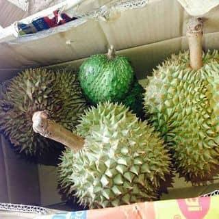 Đặc sản Gia Lai , vùng đất có hoa quả ngon nhất, ko ngon ko lấy tiền của bonglan91 tại Vĩnh Phúc - 3836243
