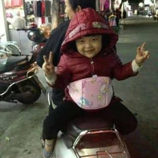 ĐAI XE MÁY CHO BÉ của giadungninhthuan tại Tuyên Quang - 2951651